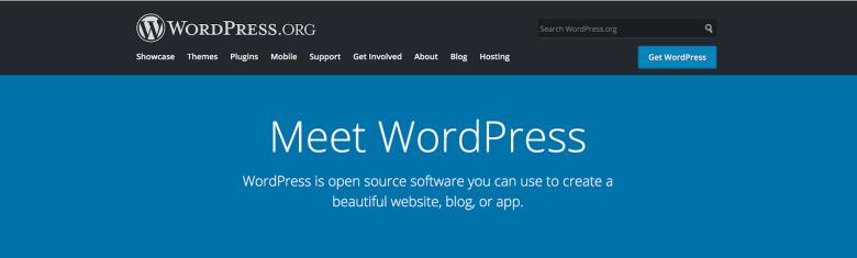 Errori I nuovi blogger non scelgono WordPress come CMS