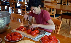 Woman chopping tomatoes