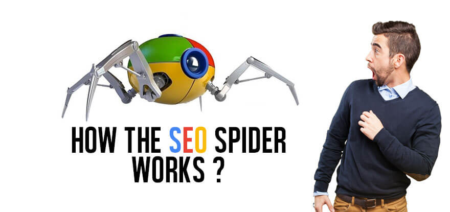 how-the-seo-spider-works