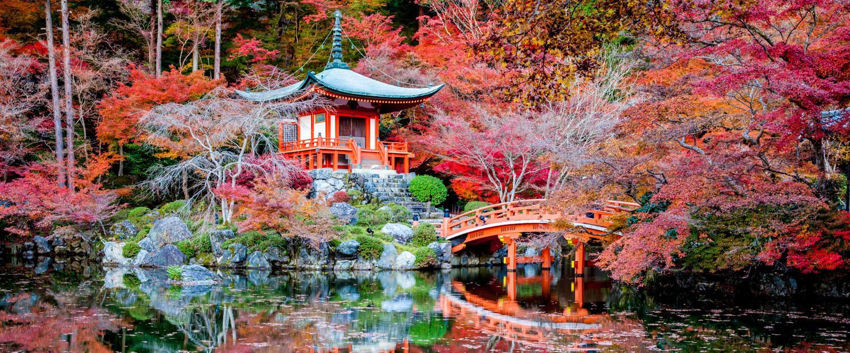 نتيجة بحث الصور عن السياحة في كيوتو