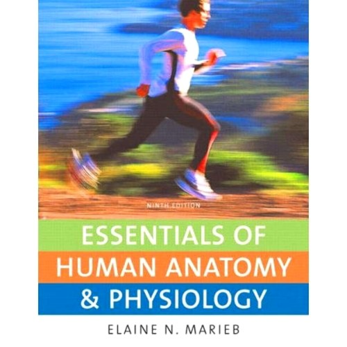 Human Anatomy And Physiology Textbook Pdf - Photo Trend & Ideas