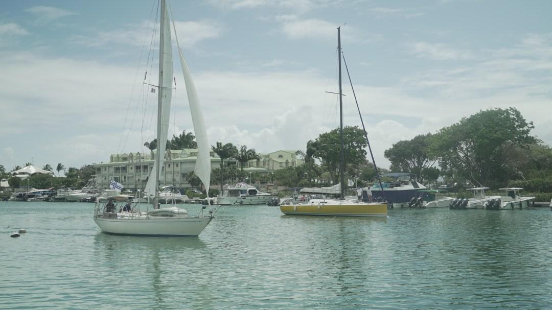 Cara Mia purjehtimassa kohti Dominicaa. Satamassa purjeet auki ja kohta keltainen Poco jää taakse.