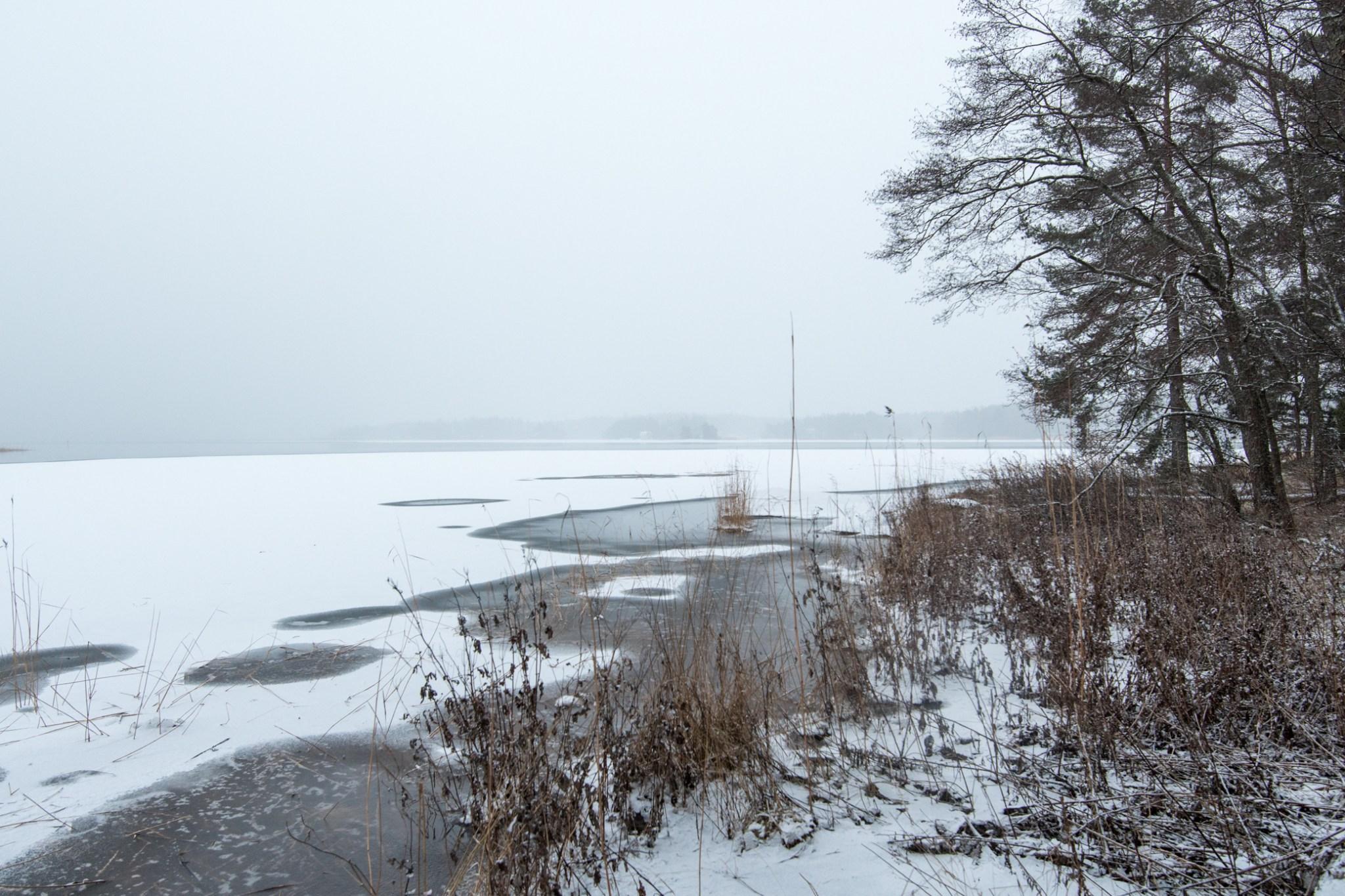 Rannassa vesi oli auki, eikä jääkään näyttänyt tukevalta.