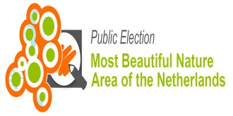 public-election-saba