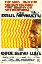Cool-Hand-Luke
