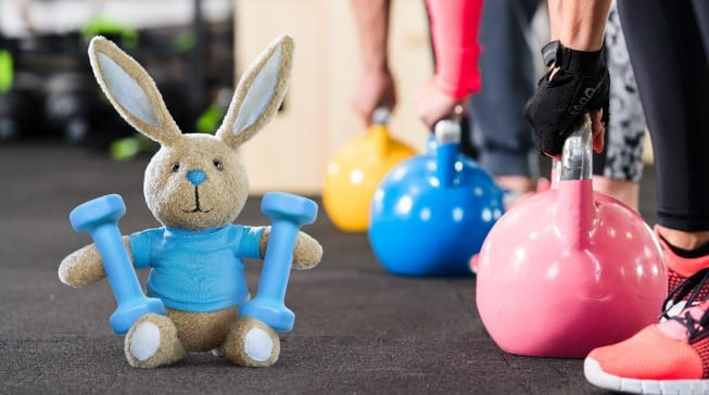 Lapin fitness