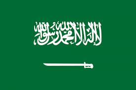السعودية تؤكد اتخاذ كافة الإجراءات الكفيلة بحماية الأطفال في النزاع المسلح باليمن