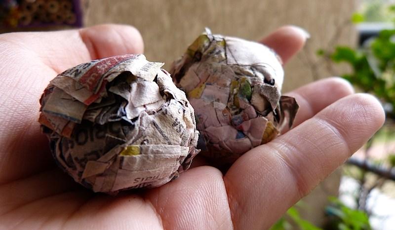 Bombas de Sementes de Jornal