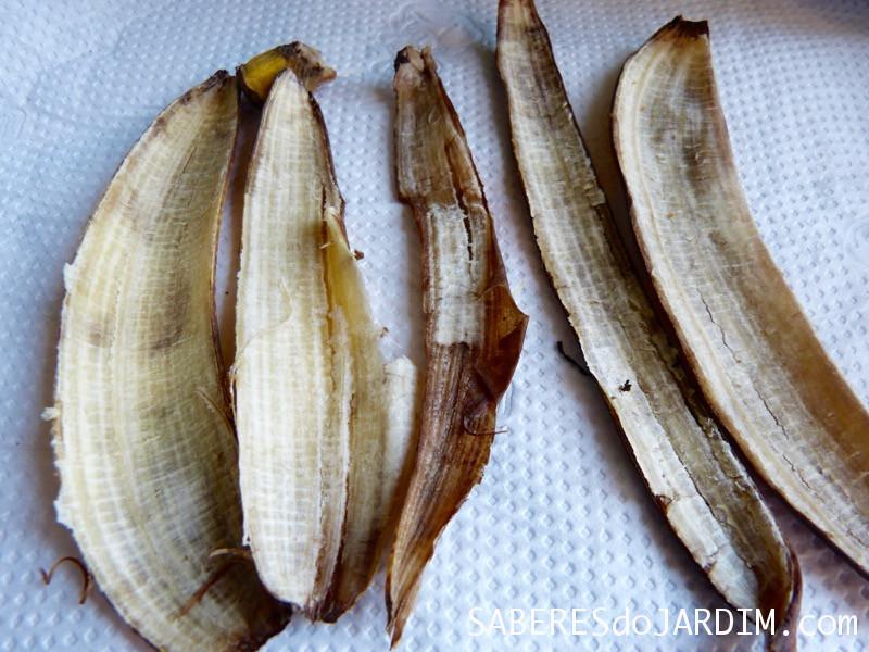 Adubo de Cascas de Banana