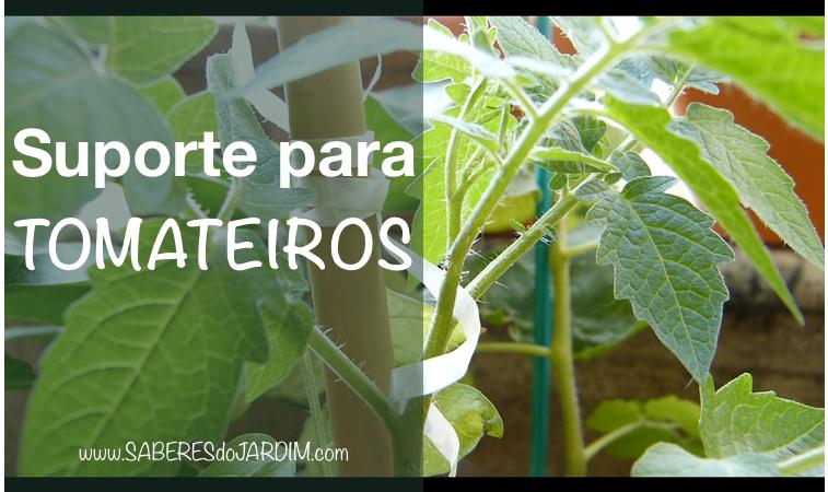 Vídeo – Suporte para Tomateiros