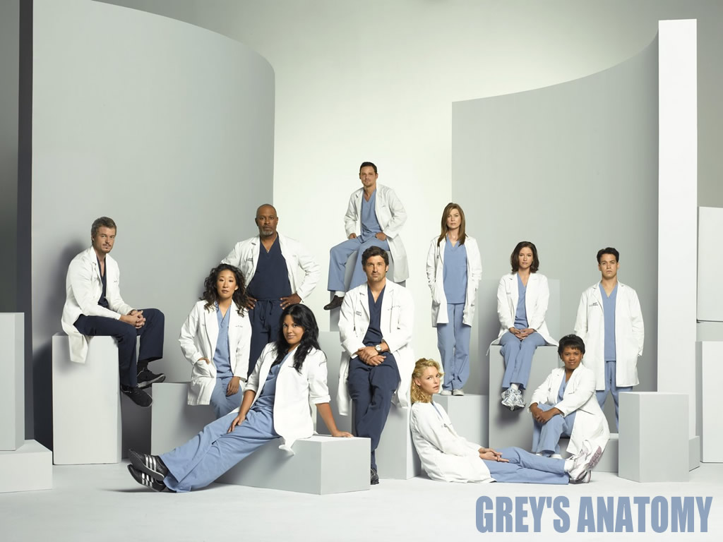 https://i1.wp.com/www.sabetudo.net/wp-content/uploads/2010/07/greys-anatomy.jpg