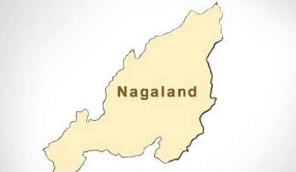 Nagaland assembly result 2018