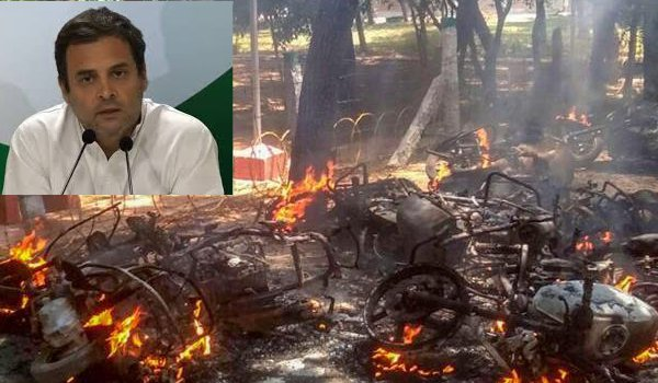 Gunning down of protesters in Tamil Nadu is state sponsored terrorism : Rahul Gandhi