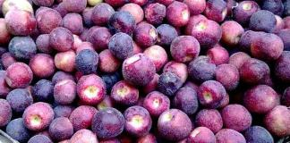 Falsa Fruit to remove physical weakness