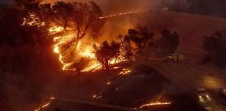 Fire in California forests more than strong winds in America