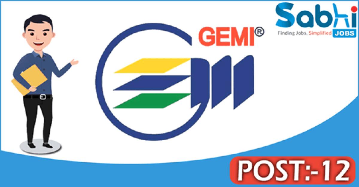 GEMI recruitment 12 Professional