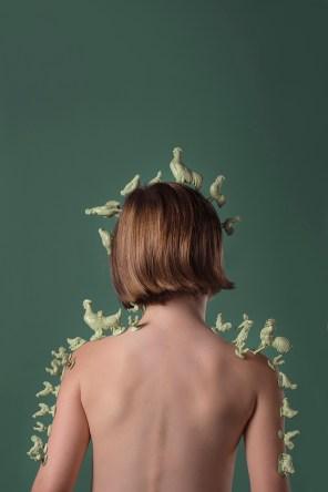 #Transhumance des Poules