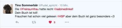Tino-Sommerbär-Hochsensibel-durch-den-Tag-Sabine-Dinkel