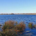 natuurgebied in Twente