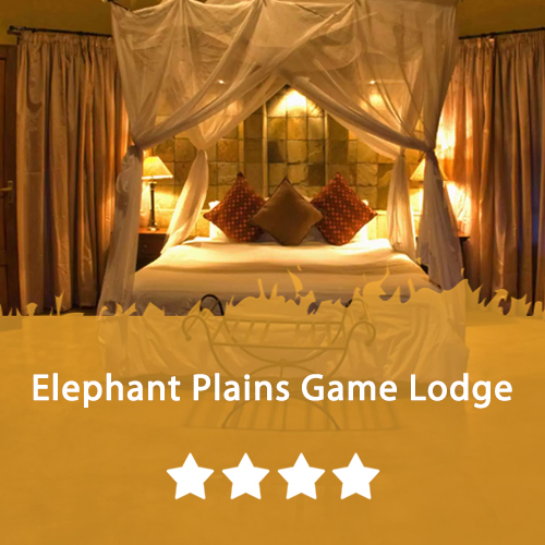 Elephant Plains Game Lodge Featured Image