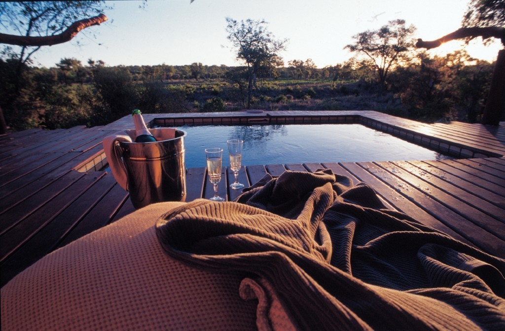 Simbambili Game Lodge Plung Pool