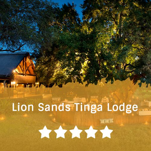 Sabi Sands  template   Lion Sands Tinga Lodge