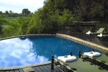 Lion Sands River Lodge Swimming Pool