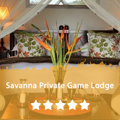Savanna Private Game Lodge Featured Image