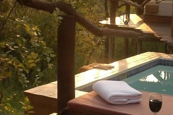 Simbambili Game Lodge Private Plunge Pool
