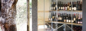 Londolozi Founders Camp Wine Collection