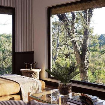 Londolozi Pioneer Camp Accommodation Luxury Suite View