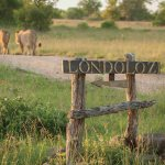 Londolozi Game Reserve Entrance Sign
