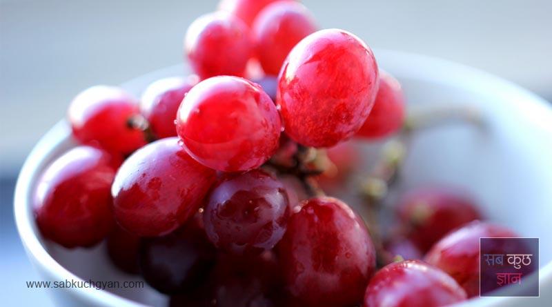 kidney benefits foods, kideny problem, kidney disease, healthy foods, surfering kidney