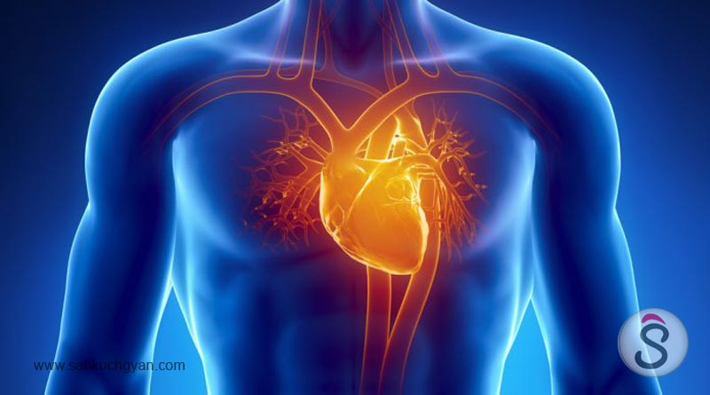 how-to-strengthen-your-heart-with-exercise 02