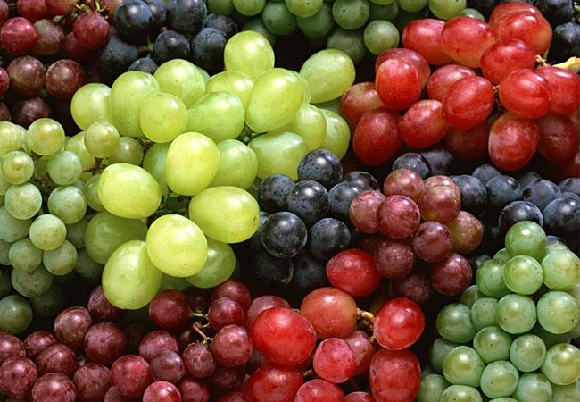Grapes-khatte-fal