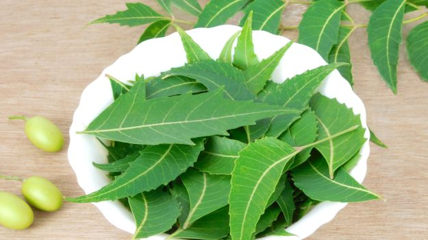 99-people-would-not-know-these-benefits-due-to-neem
