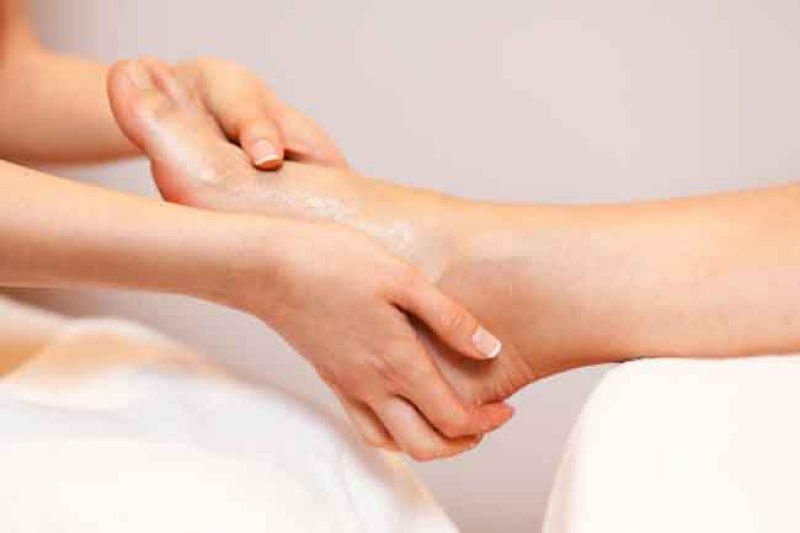 Holy Basil (Tulsi) Top 7 Health Benefits (1)