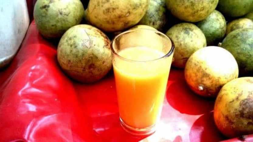 10-health-benefits-of-bael-kaitha-in-ayurveda (4)