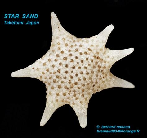 Stern-Sand-taketomi-1-texte