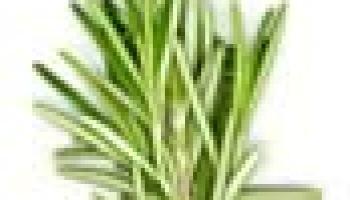 acido urico tratamiento omnilife alimentos ricos en hierro y acido folico pdf horario de dieta de acido urico y colesterol alto
