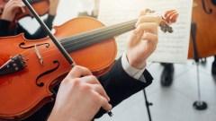 Manutenção violino instrumentos de cordas
