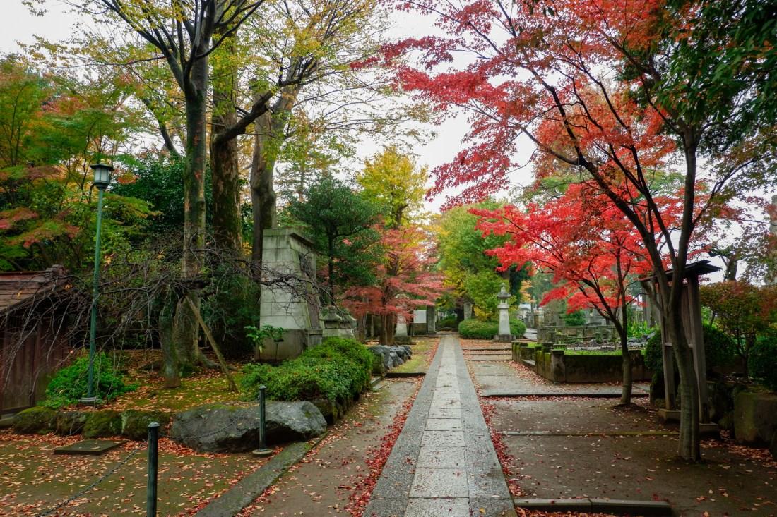 Gotokuji-temple-birthplace-of-maneki-neko