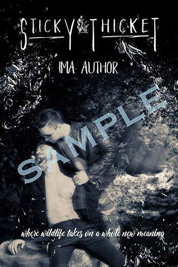 PSP_BookCoverExample_FINAL