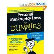 Chapter 20 bankruptcy