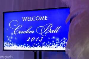 The Crocker Art Museum Ball - 2013 [PHOTO GALLERY]