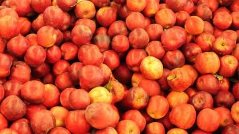 Midtown Farmers Market Gets Festive in December