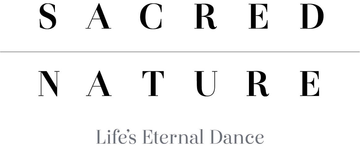 Sacred Nature wordmark