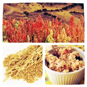 Quinoa and Oats are good for you