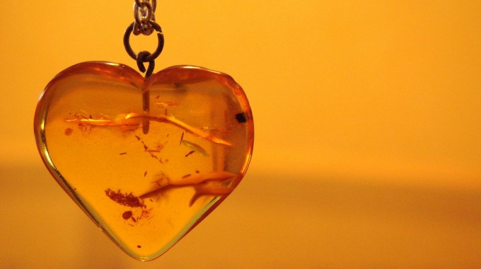"""The Many Uses and Properties of Amber Including One That Could Save Your Life"""