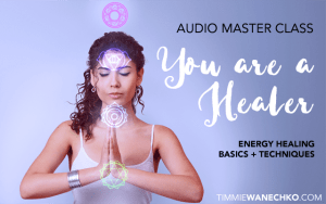 You are a Healer Audio Master Class by Timmie Wanechko
